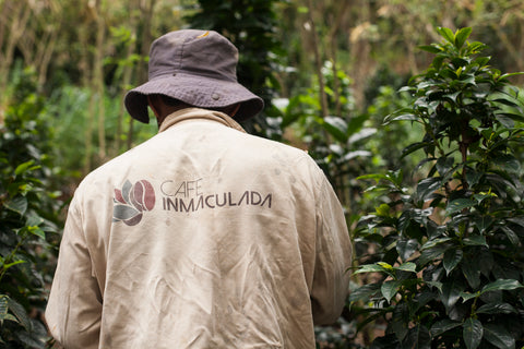 Inmaculada Coffee Farms Specialty Coffee Colombian Coffee