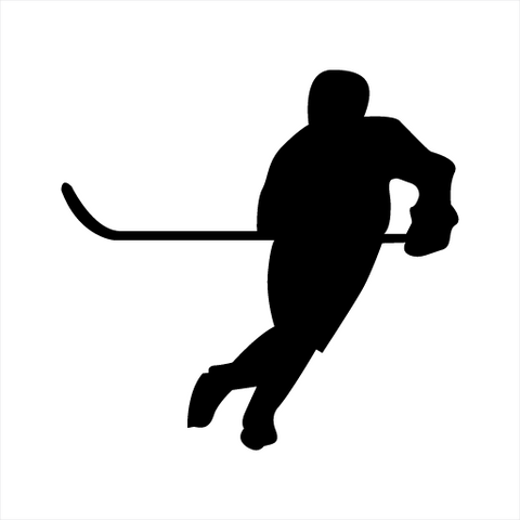 Hockey Sticker 7 - cartattz1.myshopify.com