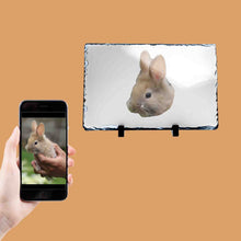 Load image into Gallery viewer, Rabbit Picture Photo Slate