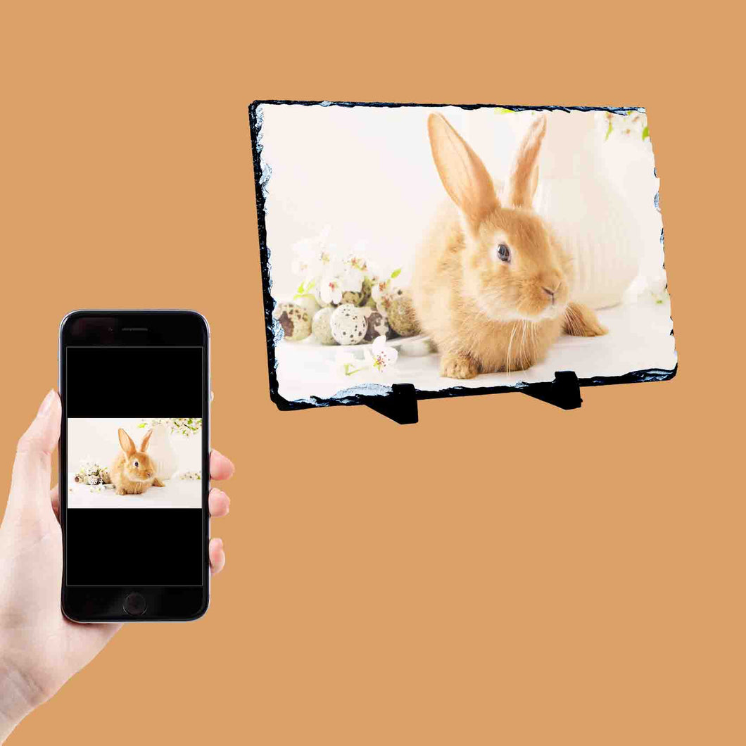 Your Rabbit Photo On A Photo Slate