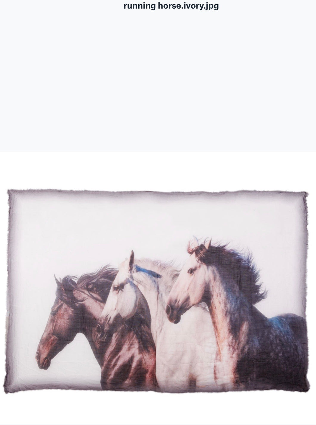 Running Horses Scarf by Blue Pacific