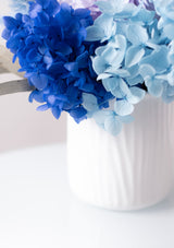 Preserved hydrangeas in vase arrangement consisting of deep cobalt blue and sky light blues shades with free delivery in singapore