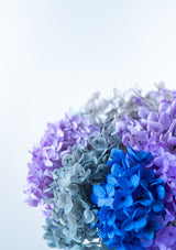 Cool color palette filled of blues, purples, greys hydrangeas filled arrangement in a white or black glass vase in singapore with free delivery