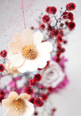 Preserved stella luna flower imported from Italy amongst red stirlingia flowers inspired of a red galaxy yet earthly tone