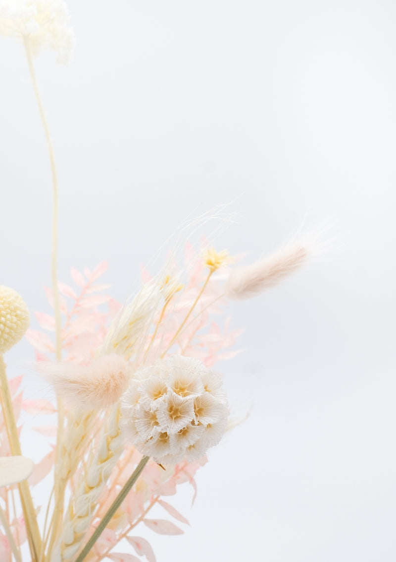Handpicked in white, neutral and peach theme are these preserved flowers for a scent miracle sola flower arrangement in singapore by best bespoke florist