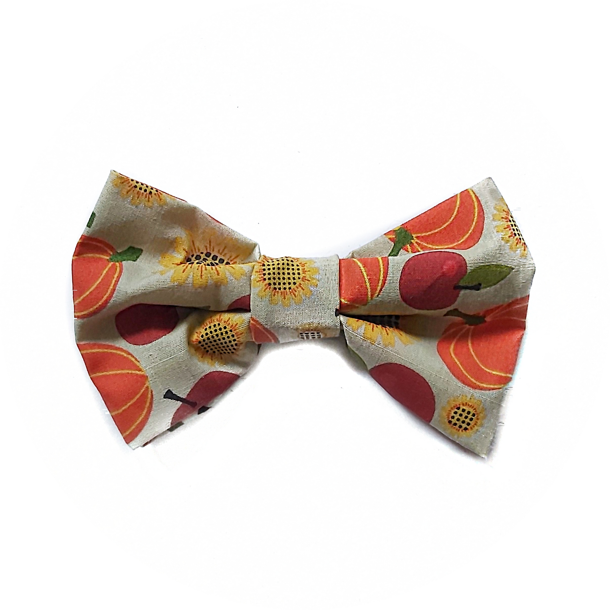 Fall Orchard Bow Tie