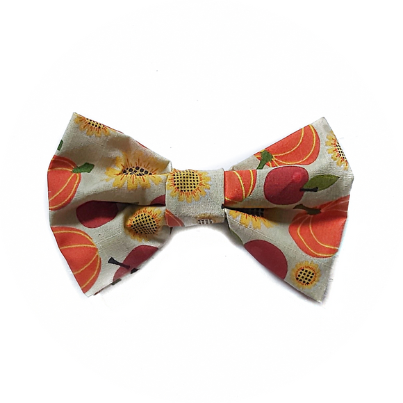 Fall Orchard Bowtie