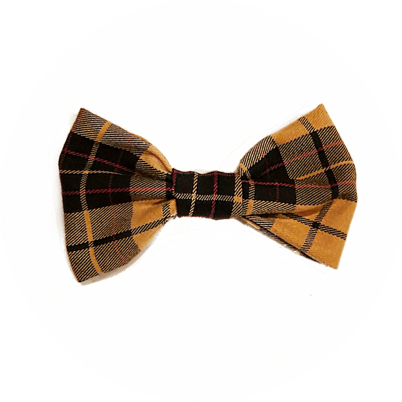 Mustard Yellow and Black Bowtie