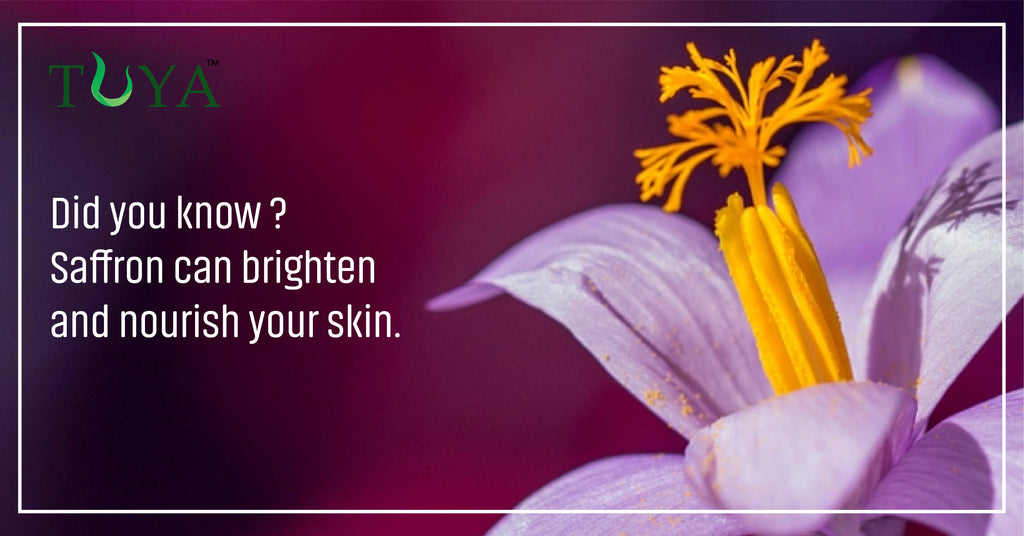 6 Amazing Benefits Of Saffron For Skin Tuya Beauty