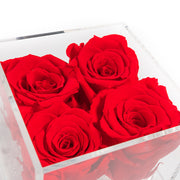 Fleur de luxe montreal fleurs  mfleurs eternity roses  preserved roses forever roses flower box montreal  mfleurs  fleurs pas cher venus et fleurs montreal flowers delivery fleurs rose éternelle ever lasting roses gift box valentine day champagne gift card red sephora chocolate luxury toronto florist eternal roses black roses Mother's Day