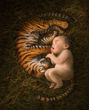 Load image into Gallery viewer, Tiger Born