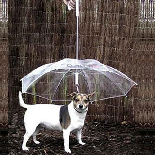 Rain Snow Protection Pet Umbrella for Puppies Dog Waterproof Transparent Cover Built-in Leash-Fashion3K