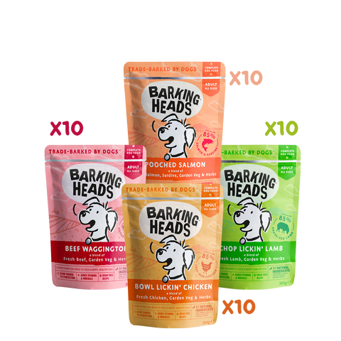 barking heads Wet Favourites Bundle
