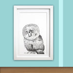 Baby Owl Print - Little one