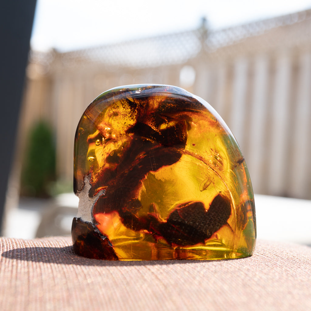 Dominican Green Amber Vegetable Fossil
