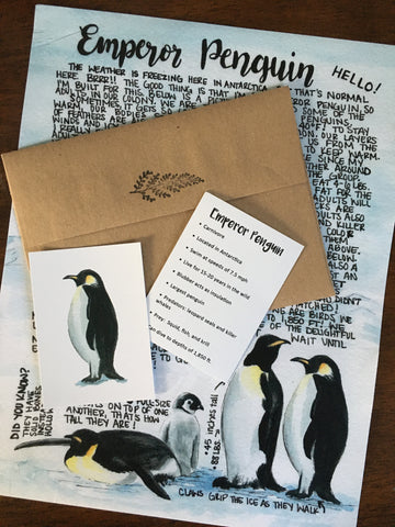 Emperor Penguin Letter January 2020