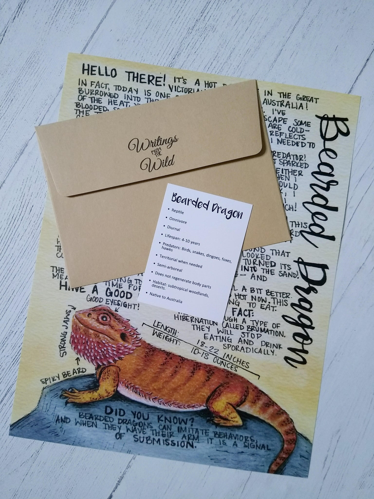 Bearded Dragon Letter September 2020