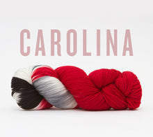 Load image into Gallery viewer, A skein of RCY Hat Trick in Carolina