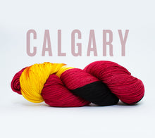 Load image into Gallery viewer, A skein of RCY Hat Trick in Calgary
