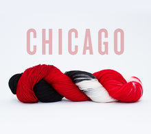 Load image into Gallery viewer, A skein of RCY Hat Trick in Chicago