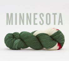 Load image into Gallery viewer, A skein of RCY Hat Trick in Minnesota