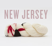 Load image into Gallery viewer, A skein of RCY Hat Trick in New Jersey