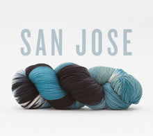 Load image into Gallery viewer, A skein of RCY Hat Trick in San Jose