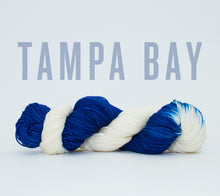 Load image into Gallery viewer, A skein of RCY Hat Trick in Tampa Bay