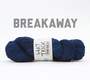 A skein of RCY Hat Trick Semi-Solid in Breakaway