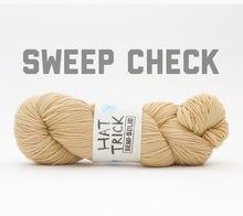 Load image into Gallery viewer, A skein of RCY Hat Trick Semi-Solid in Sweep Check
