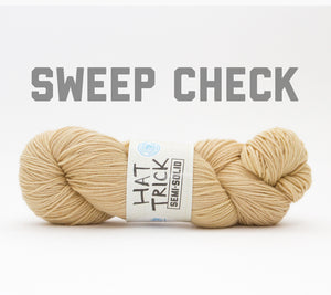 A skein of RCY Hat Trick Semi-Solid in Sweep Check