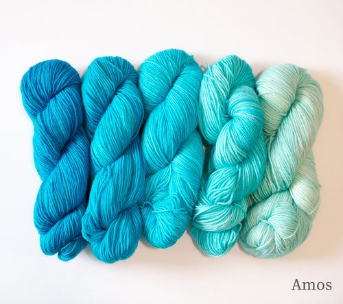 Five skeins of RCY Adam & Eve Gradients in Amos