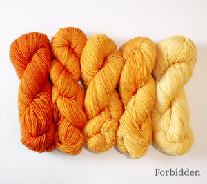 Five skeins of RCY Adam & Eve Gradients in Forbidden