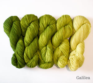 Five skeins of RCY Adam & Eve Gradients in Galilea