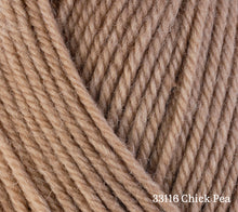 Load image into Gallery viewer, A close up of Berroco Ultra Wool in 33116 Chick Pea