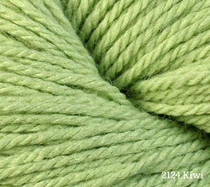 A close up of Berroco Vintage DK in 2124 Kiwi