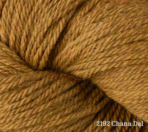 A close up of Berroco Vintage DK in 2192 Chana Dal