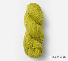 Load image into Gallery viewer, A skein of Blue Sky Fibers Extra in 3514 Marsh