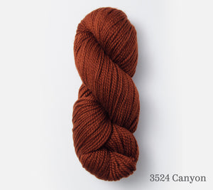 A skein of Blue Sky Fibers Extra in 3524 Canyon