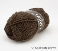 Load image into Gallery viewer, A ball of Drops Karisma in 04 Chocolate Brown