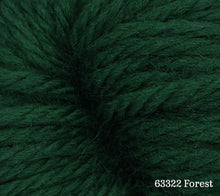 Load image into Gallery viewer, A close up of Estelle Chunky in 63322 Forest