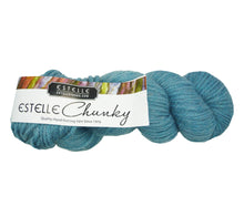 Load image into Gallery viewer, A skein of Estelle Chunky