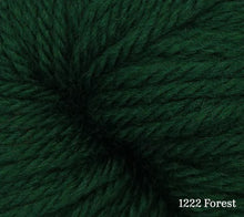 Load image into Gallery viewer, A close up of Estelle Worsted in 1222 Forest