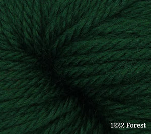 A close up of Estelle Worsted in 1222 Forest