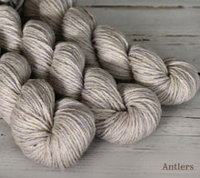 Load image into Gallery viewer, Three skeins of Julie Asselin Nurtured in Antlers