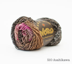 A ball of Noro Silk Garden in 510 Asahikawa