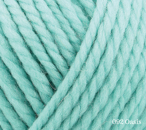 A close up of Rowan Big Wool in 092 Oasis