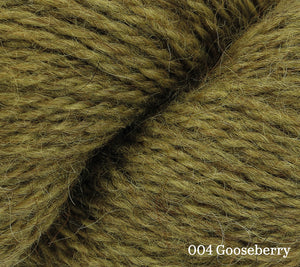 A close up of Rowan Moordale in 004 Gooseberry