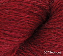 Load image into Gallery viewer, A close up of Rowan Moordale in 007 Beetroot