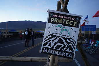 Occupation of Mauna Kea Access Road